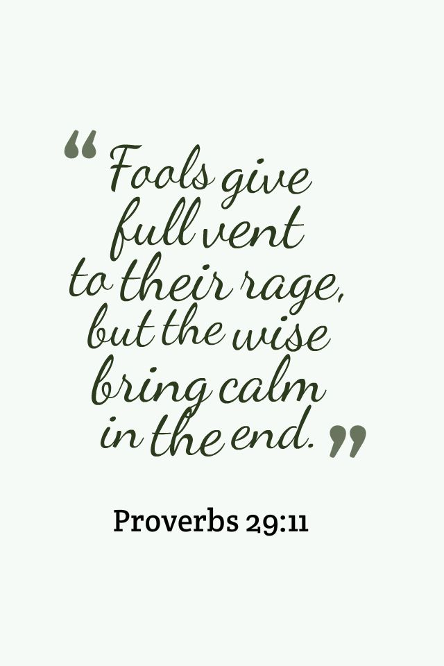Proverbs 29:11 A fool uttereth all his mind: but a wise man keepeth it in till afterwards.