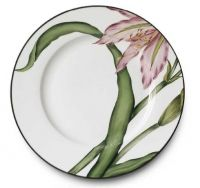 Each piece of Parisian designer Alberto Pinto's charming dinnerware collection is handpainted on limoges porcelain. Designs range from classic florals and Asian motifs to more modern designs each reflecting elegance and sophistication. Alberto Pinto porcelain dinnerware is a must have for all dinnerware lovers. www.fxdougherty.com