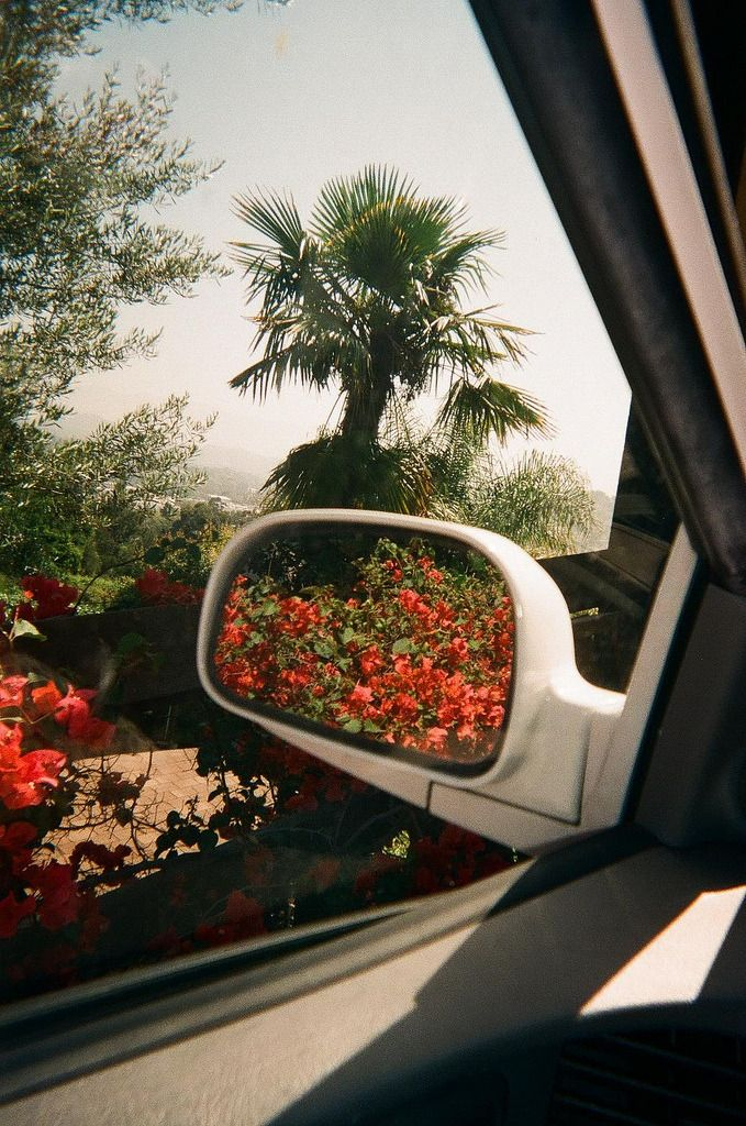 California - STEPHANIE GONOT PHOTO