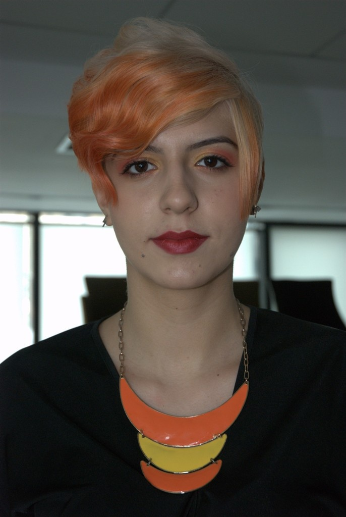 Color Zoom - 2013 - Romania.  Goldwell: Set the trend!
