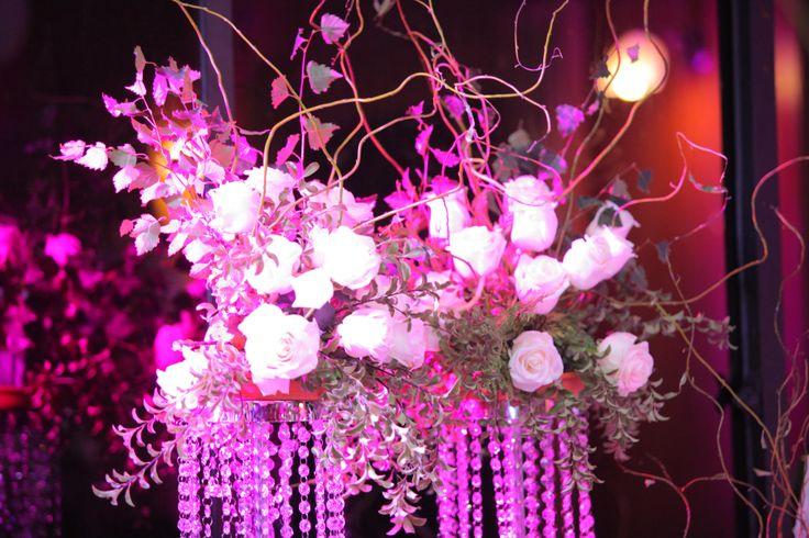 Rosas y Caireles