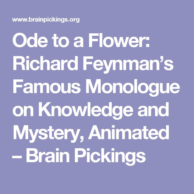 Ode to a Flower: Richard Feynman's Famous Monologue on Knowledge and Mystery, Animated – Brain Pickings