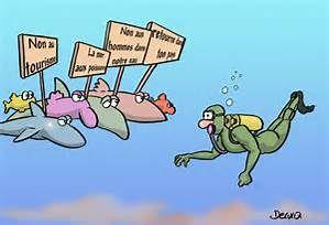 Dessin plongeur humour bing images plong e pinterest search image search and humour - Dessin plongeur ...