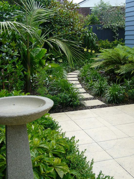 Small tropical courtyard