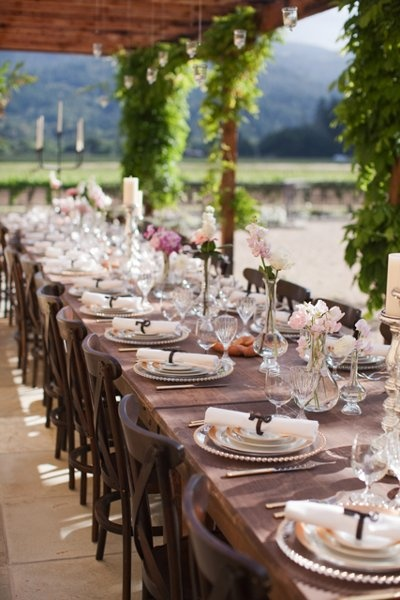 beautiful vineyard reception (Jessica Burke Photography)