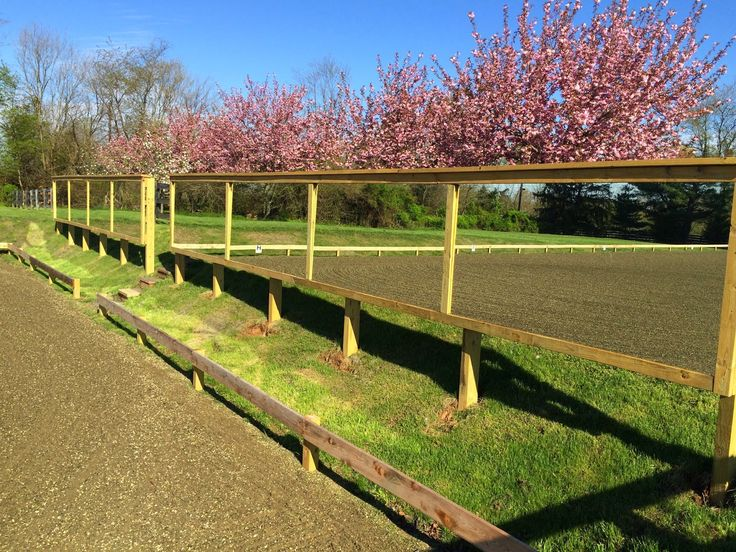 Building & Managing the Small Horse Farm: Mirrors for an Outdoor Riding Arena