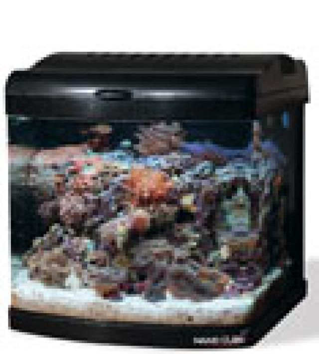 8 Mini Saltwater Aquarium Kits for Beginners: JBJ Nano Cube Deluxe Aquarium