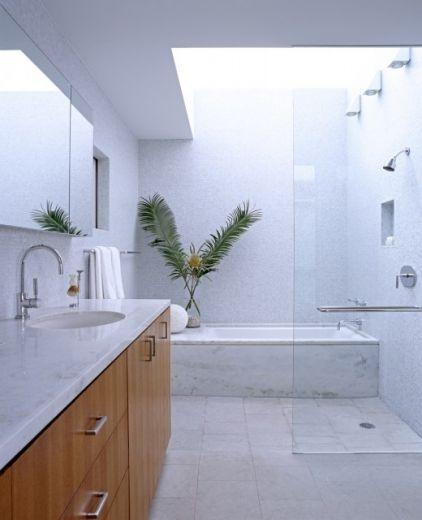 Skylight: Open Shower, Shower Design, Davis Architects, Architects Pc, Newport Beach, Bathroom Ideas, Paul Davis, Modern Bathrooms