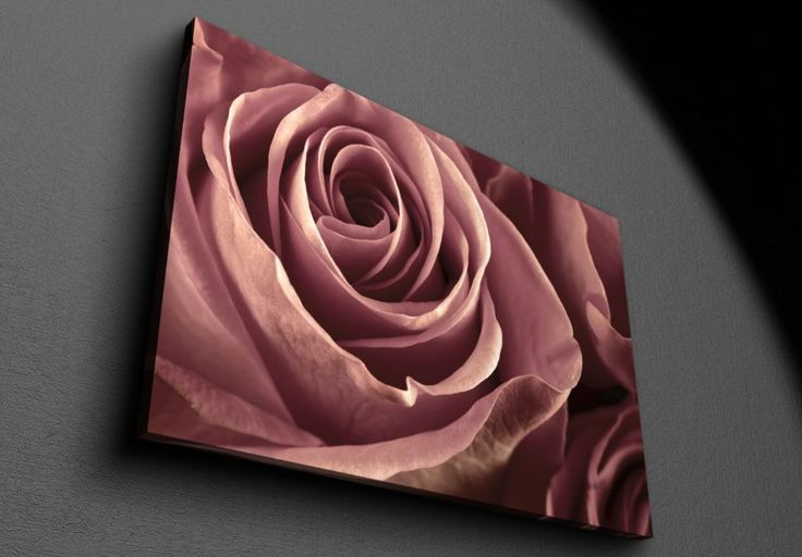 Bunch of marsala colored roses - Canvas