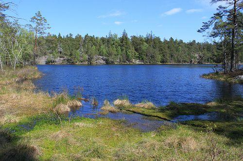 Lake Årsjön | Lake Årsjön, Tyresta National Park, Sweden | Ingeborg van Leeuwen | Flickr