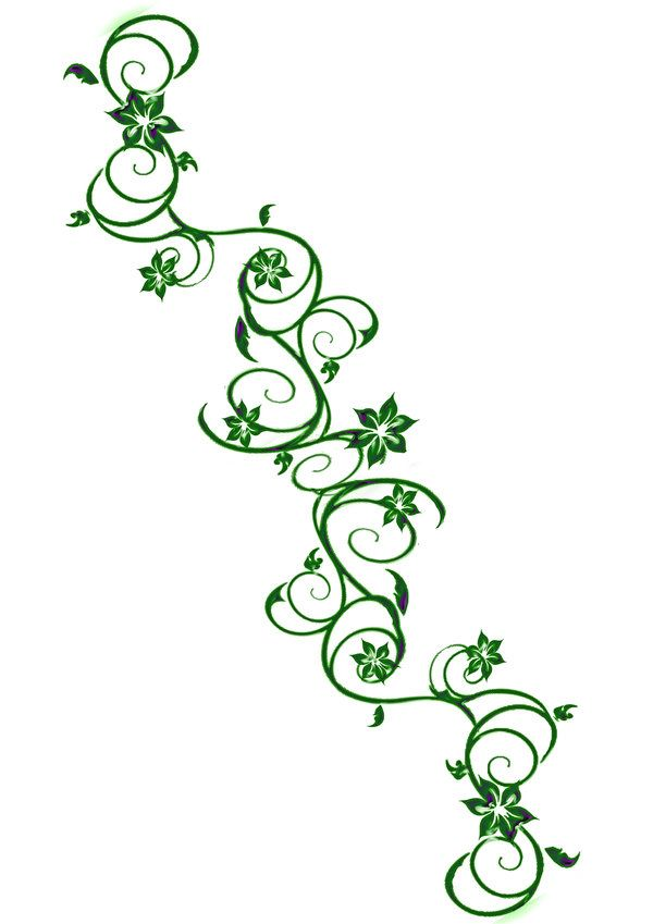 Drawings Of Vines And Flowers | vine tattoo2 by ~Darla-Illara on deviantART