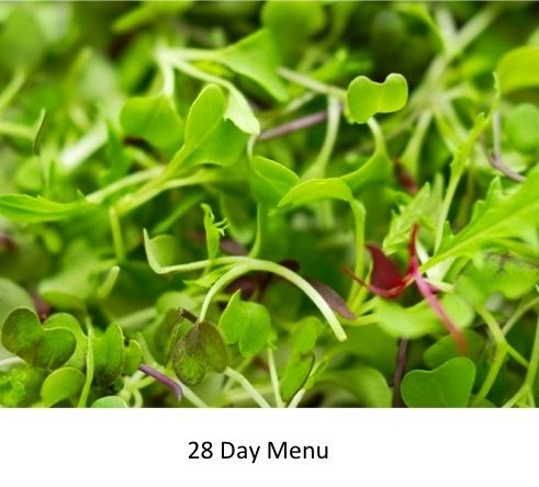Start Fresh 28 Day Menu