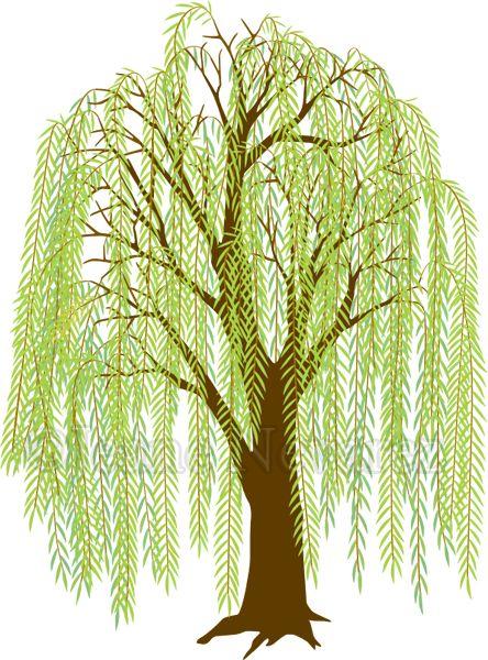 Art By Jeane Nevarez Willow Tree Willow Tree Tattoos