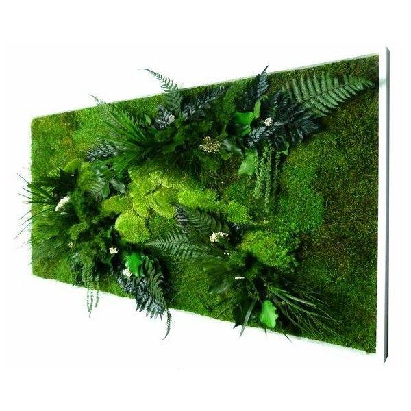 Tableau Végétal stabilisé NATURE rectangle XL
