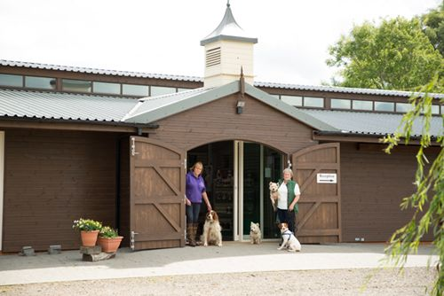 A new business adventure for the love of horses #stablesforbusiness