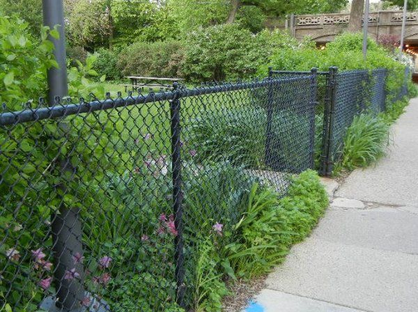 This black chain link fence looks great with the nice landscaping.