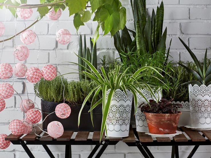 Rośliny i ogród, Wiosenna odsłona ogrodu - SKURAR - Skrzynka z uchwytem, do wewnątrz/na zewnątrz, różne kolory Cena: 39,99 PLN...