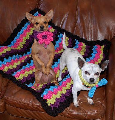 Easy Dog Blanket Knitting Pattern : Dog blanket, Dog collars and Collars on Pinterest