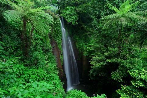 .:: cr8image ::.                     Curug Nangka Waterfall - Bogor, West Java