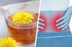 5 einfache Möglichkeiten für eine Nierenreinigung - Besser Gesund Leben