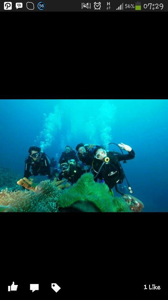 Fukui.....Satu2nya diving poin yg slope di Bunaken # fukui  #Bunaken #scuba #scubadiving #scubadivingindonesia #indonesia #menyelam #selam