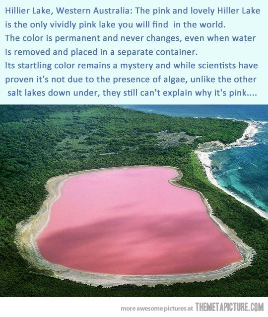 The only vividly pink lake in the world…but there are a total of 8 pink lakes around the world. Very cool!