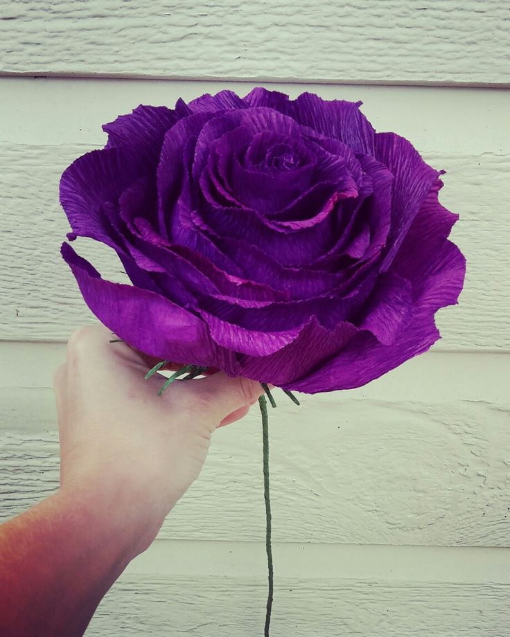 Purple Wedding Gigant