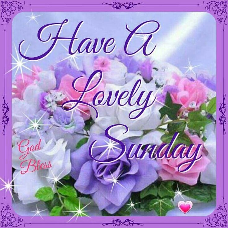 Attractive Have A Lovely Sunday Good Morning Sunday Sunday Quotes Blessed Sunday Sunday  Blessings Good Morning Sunday Sunday Pictures