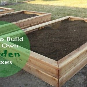 How to Make Your Own Garden Boxes