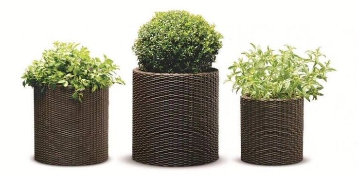 Cylindrical Brown Rattan Resin Planters Set of Three Indoor Outdoor Use #planter