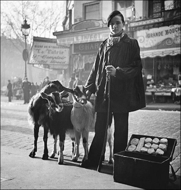 Willy Ronis - Selling Goat's cheese, Paris, 1935.