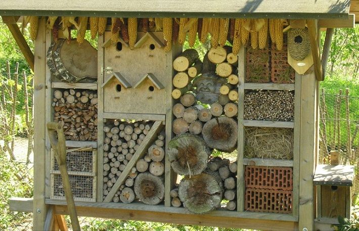 Insect Hotels - Provide a home to pollinators and pest controllers. Tidy gardens, lawns and lack of dead wood, mean less and less habitat for wild bees, spiders and ladybugs.