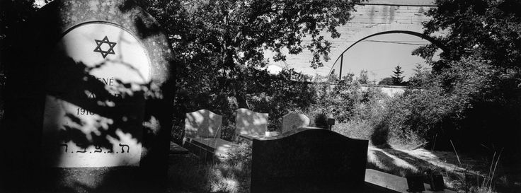 Magnum Photos - Patrick Zachmann. FRANCE. Carpentras. Jewish cemetery. 2000. Great use of light and shadows to draw emphasis to the headstone.