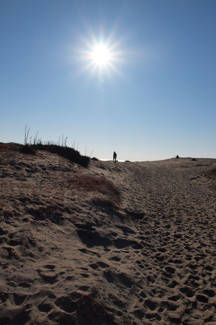 千葉県野手浜付近の浜☆この先に海が広がります♪