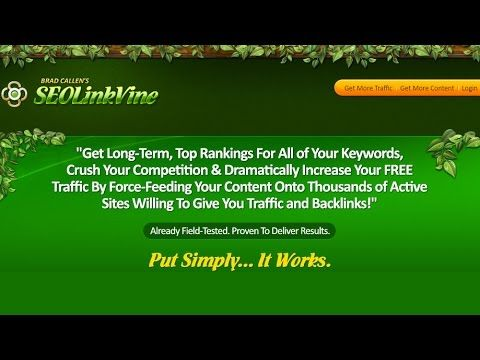 Link building service  N1 SEO Service  Build one way links  High quality...