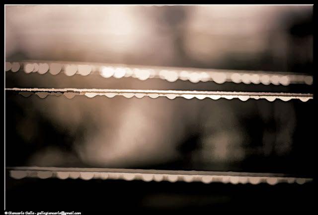 Pioggia - photographic processing (309) - elaborazione fotografica di un'immagine di fili con una serie di gocce di pioggia ...