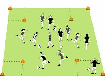 Wolves and Sheep Soccer Game