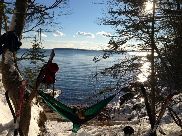 Best Backyard Hammock Hammock Camping: Why Switch From A Tent To A Hammock