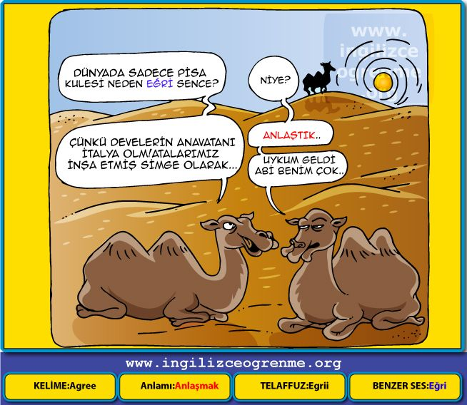 Agree Türkçe anlamı nedir?