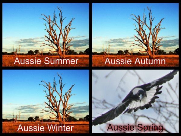 The Aussie Seasons