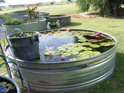 Repurposed Garbage Can And Cattle Trough To Make Pond