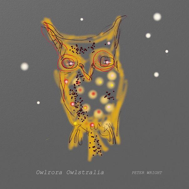 Owl astronomy aurora Australis nebula star sign
