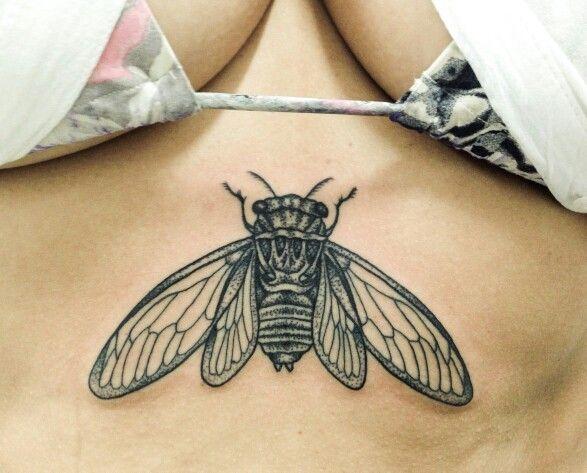 Cicada Pointillism by .@augustonovaera