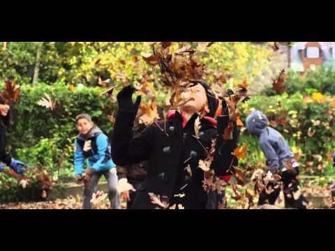 VIDEO: When was the last time you jumped in a giant leaf pile? Re-live that (and the aftermath) in our latest 'Ode to Pile' from the folks at Black Box Productions.