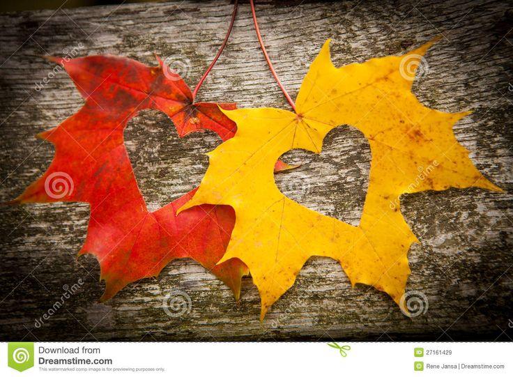 26 best autumn hearts images on pinterest autumn