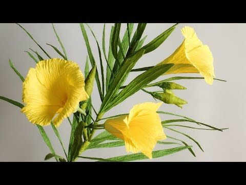 ABC TV | How To Make Yellow Oleander Paper Flower From Crepe Paper - Craft Tutorial - YouTube