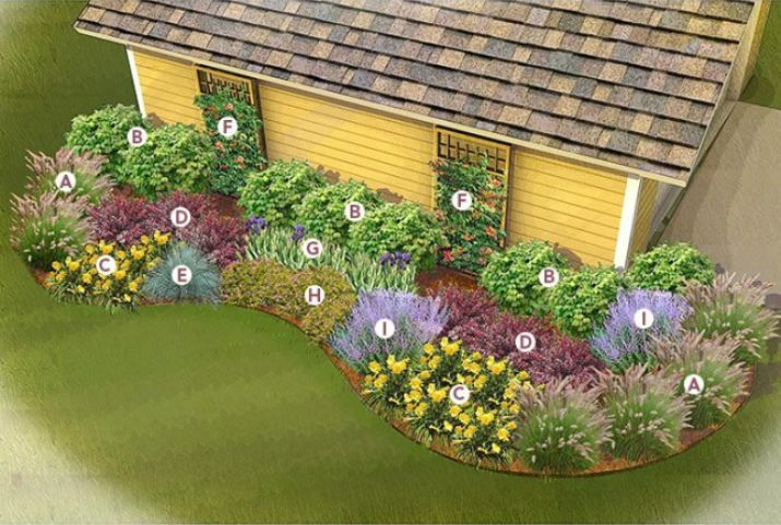 Image Result For Landscaping Side Of House Yard Full Sun Front House Landscaping Full Sun Landscaping Full Sun Perennials