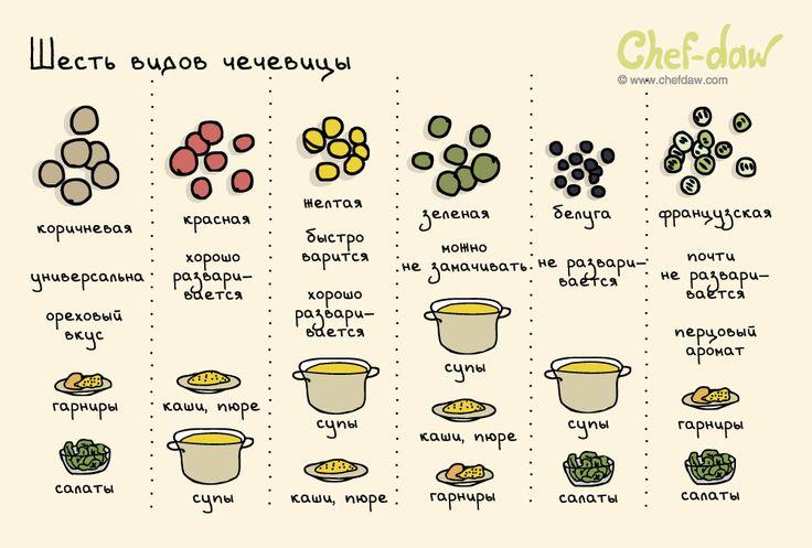 Шесть видов чечевицы - chefdaw