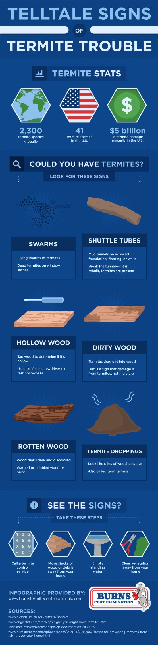 Swarms, shuttle tubes, hollow wood, dirty wood, damaged or rotten wood, and droppings are all signs of termites. Learn about spotting termites and getting rid of them in this infographic from a termite treatment company in Phoenix.