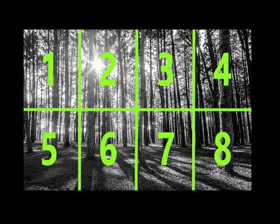 Foto behang - bomen bos  Maak een prachtige verklaring muur met deze functie muur muurschildering. Of u nu op zoek bent voor het decoreren van een woonkamer, kinder slaapkamer of kantoor, geeft deze functie muurschilderingen uw kamer die WOW factor.   Grootte: 335cm x 236cm - 10.99ft x 7.74 ft  Onderdelen / Banners: 8  Instructies opgenomen  Elke behang plakken kan worden gebruikt  Aangepast aan elk oppervlak kan worden ingekort